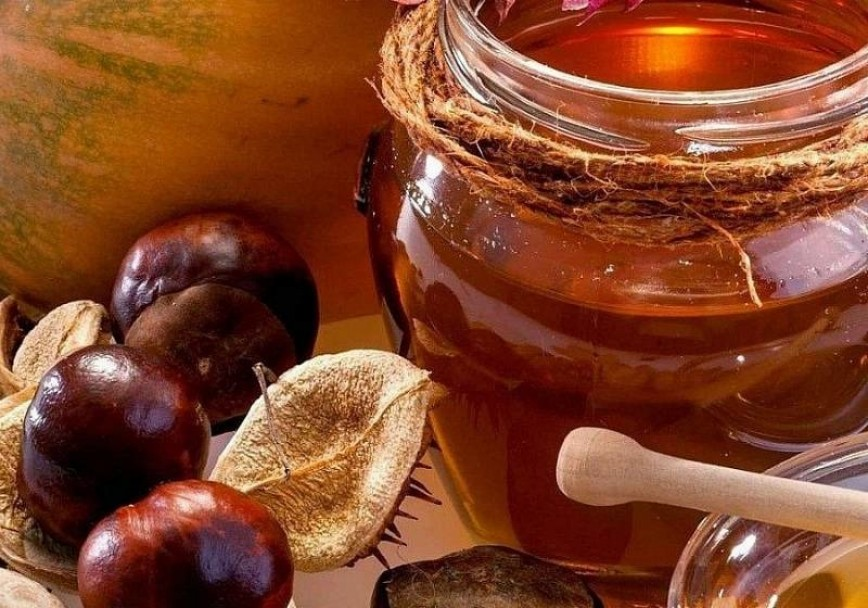 Что такое каштановый мед? — Люди Роста