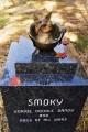 """Премия """"Smoky"""".Исторические факты"""